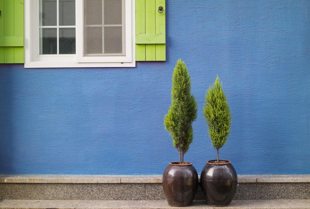 外壁塗装なら「しつこい」で評判の日本eリモデル株式会社で!